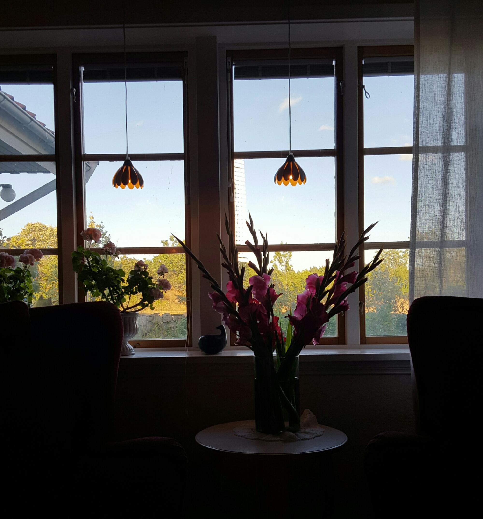 Vardagsrumsfönstret i motljus