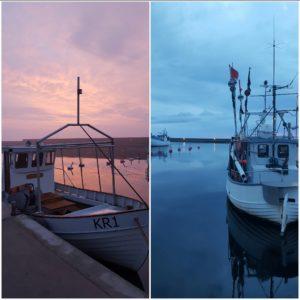 Fiskebåtar i hamnen